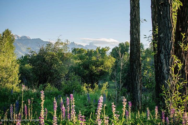 Grand Teton Views