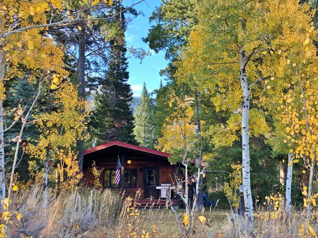 House with aspens close up