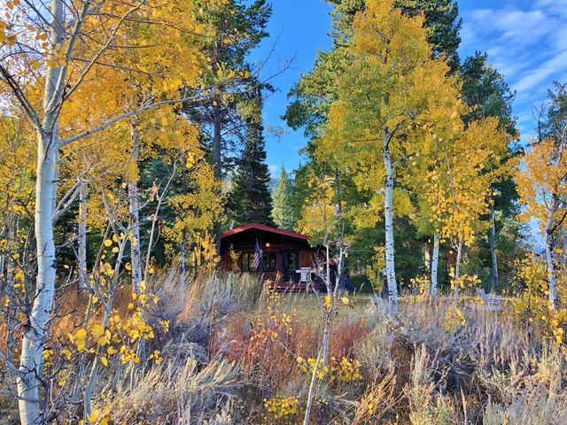 House with aspens