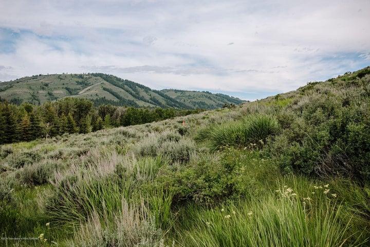 Northwestern View