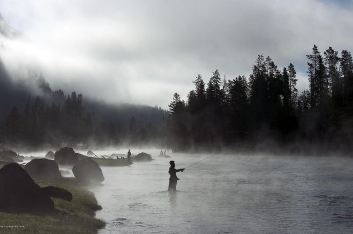 Yellowstone Fishing