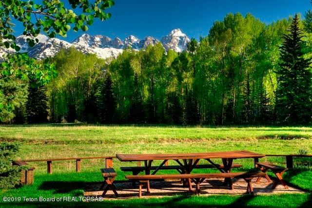 Irrigated Pasture