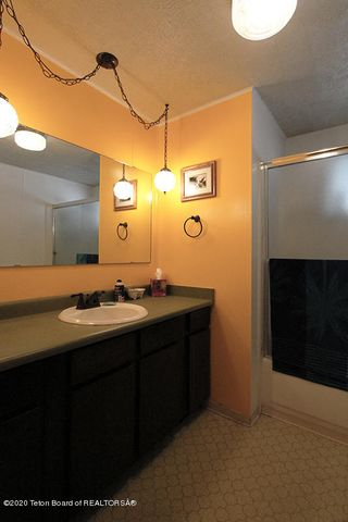 Mule Deer BC Hall Bath 1 100 dpi