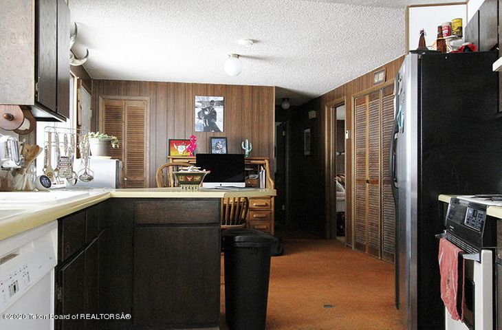 Mule Deer BC Kitchen 1 100 dpi