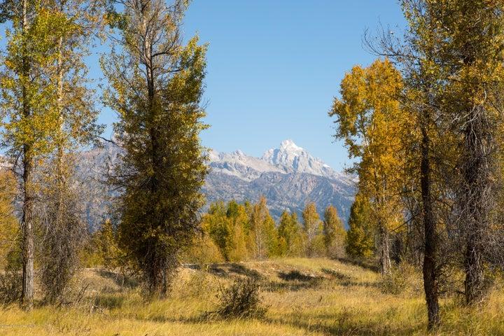 Teton View again