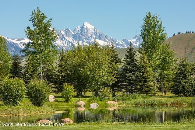 46. Teton view behind pond