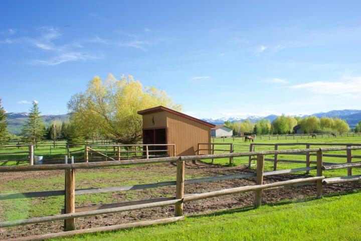 Barn_ Horses
