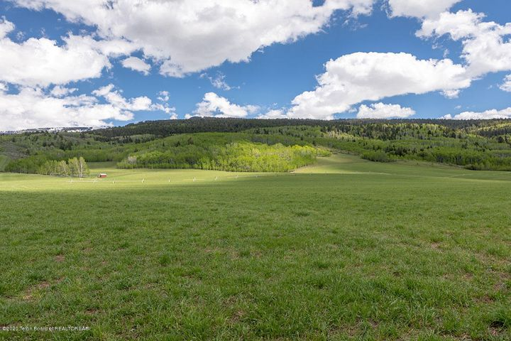 NELSON SPRING RANCH  <br>Driggs, ID