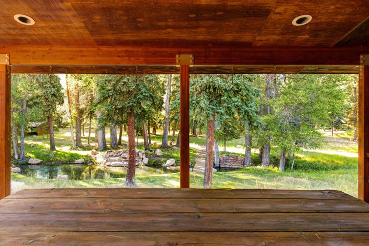 Back porch view into your own forest.