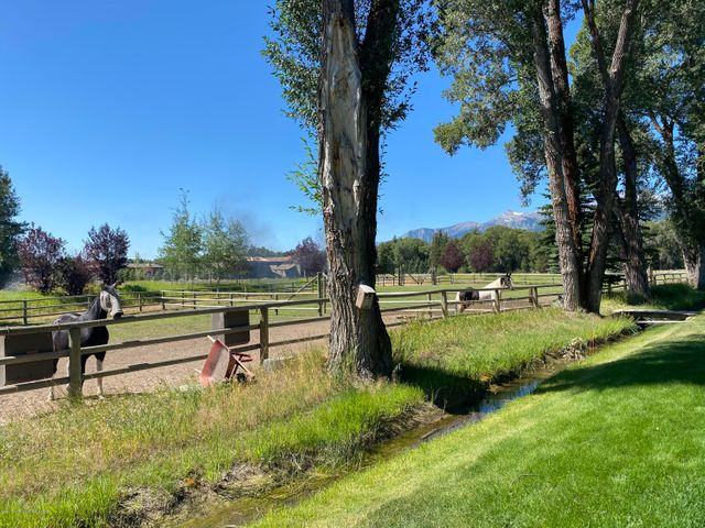2 Paddocks & Irrigation Ditch