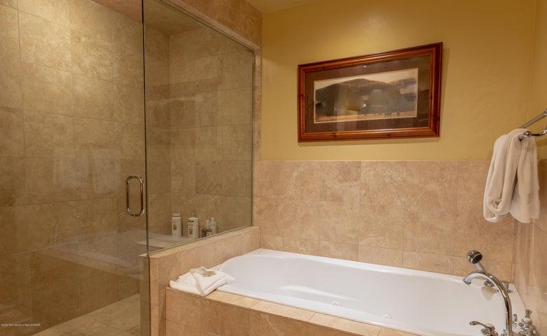 Main Bath Shower and Tub