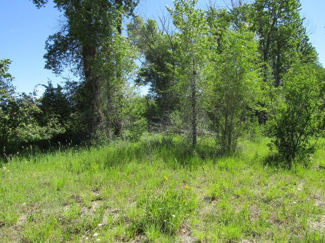 TBD SKI HILL ROAD 13 ACRES, Driggs, ID 83422