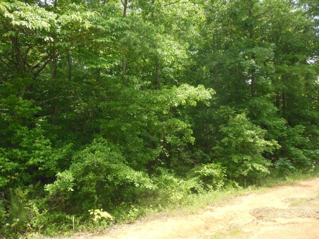 LOT 31 Driftwood Dr., Pontotoc, MS 38863