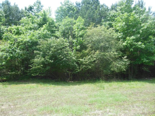 Lot 3 Timber Creek, Pontotoc, MS 38863