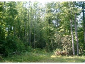 6 Pfeiffer Ridge Road, Elizabethton, TN 37643