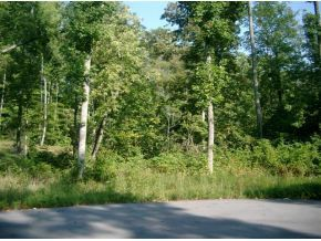 5 Pfeiffer Ridge Road, Elizabethton, TN 37643