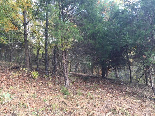 Lot 1 Charles Johnson Road, Chuckey, TN 37641