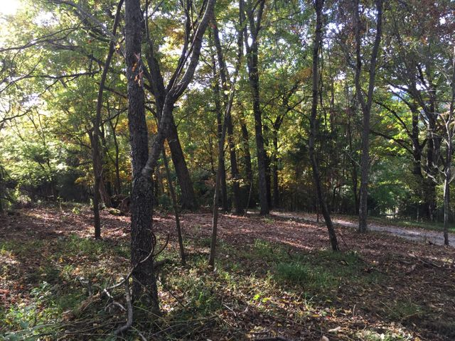 Lot 3 Charles Johnson Road, Chuckey, TN 37641
