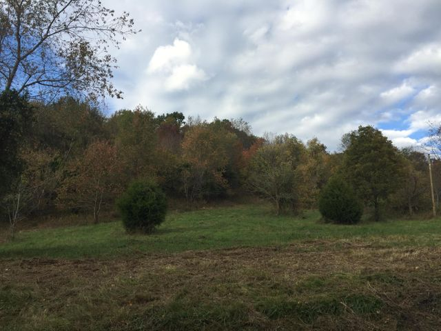 Lot 5 Charles Johnson Road, Chuckey, TN 37641
