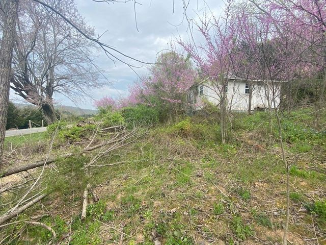 1220 Rock Quarry Road, Afton, TN 37616
