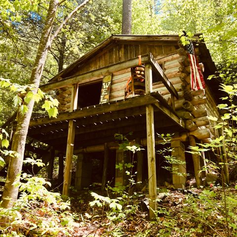 Hunter's Dream Mini Custom Built Log Cabin