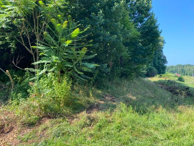 160 Scafford Branch Road, Elizabethton, TN 37643