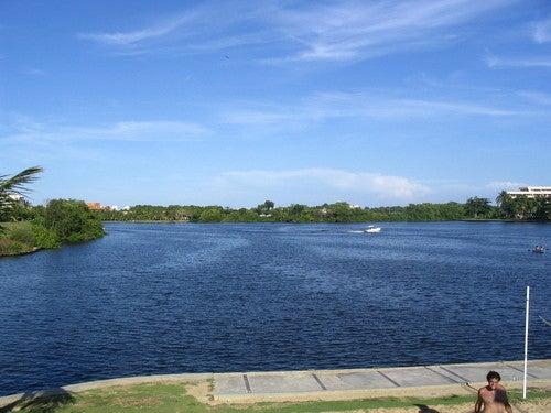 Terreno Miranda>Rio Chico>Los Canales de Rio Chico - Venta:6.254.000 Precio Referencial - codigo: 07-2987