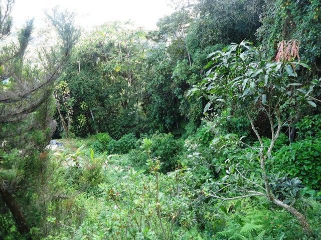 Terreno Miranda>Municipio Guaicaipuro>Laguneta de Montaña - Venta:2.263.000.000 Bolivares - codigo: 13-1446