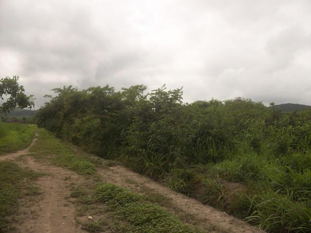 Terreno Lara>Cabudare>Parroquia Jose Gregorio - Venta:1.154.000.000 Bolivares - codigo: 13-4527