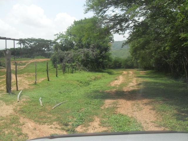 Terreno Miranda>Los Teques>Sector Paracotos - Venta:347.001.000.000 Bolivares - codigo: 13-5050
