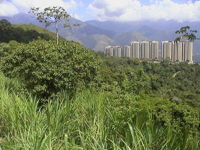 Terreno Distrito Metropolitano>Caracas>Parque Caiza - Venta:80.357.000.000 Precio Referencial - codigo: 14-355