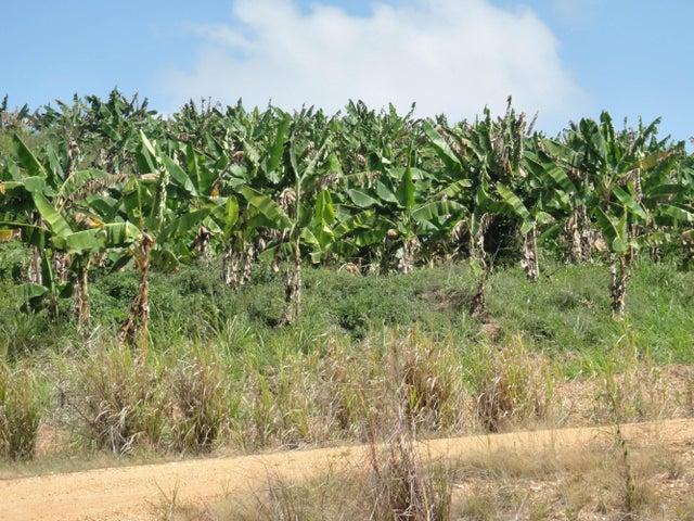 Terreno Miranda>Higuerote>Higuerote - Venta:508.389.000.000 Precio Referencial - codigo: 14-1538