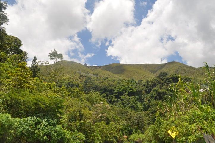 Terreno Distrito Metropolitano>Caracas>Altos de La Trinidad - Venta:69.903.000.000 Precio Referencial - codigo: 12-2585