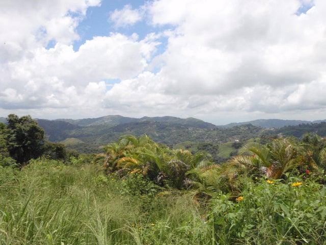 Terreno Distrito Metropolitano>Caracas>Oripoto - Venta:27.687.000.000 Bolivares Fuertes - codigo: 14-6183