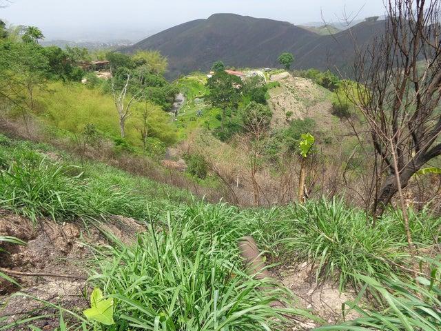 Terreno Distrito Metropolitano>Caracas>Los Anaucos - Venta:4.074.000.000 Bolivares - codigo: 14-7495