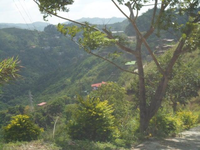 Terreno Distrito Metropolitano>Caracas>Caicaguana - Venta:10.084.000.000 Bolivares - codigo: 14-10683