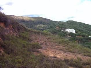 Terreno Distrito Metropolitano>Caracas>Bosques de la Lagunita - Venta:62.432.000.000 Precio Referencial - codigo: 14-12071