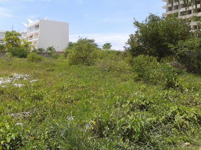 Terreno Miranda>Higuerote>Puerto Encantado - Venta:150.471.000.000 Precio Referencial - codigo: 15-4246