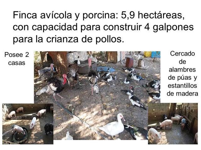 Industrial Zulia>La Cañada>Via Principal - Venta:23.094.000.000 Bolivares - codigo: 15-4474