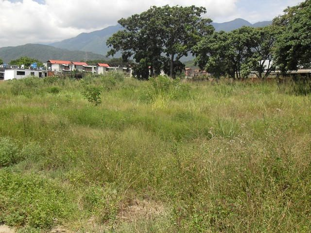 Terreno Miranda>Guatire>Guatire - Venta:600.000 Precio Referencial - codigo: 15-7414