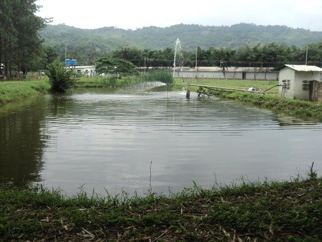 Negocios y Empresas Carabobo>Municipio Bejuma>Canoabo - Venta:1.640.000.000 Bolivares Fuertes - codigo: 15-11680
