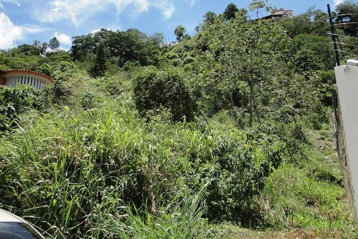 Terreno Distrito Metropolitano>Caracas>Prados del Este - Venta:129.202.000.000 Precio Referencial - codigo: 15-12315