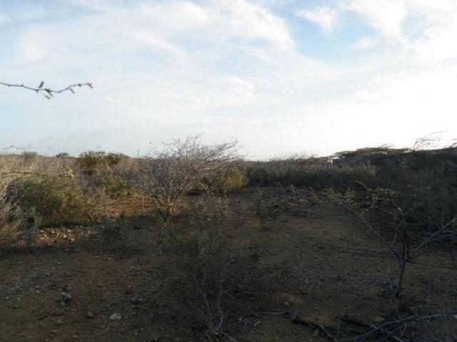 Terreno Falcon>Punto Fijo>Guanadito - Venta:6.259.000.000 Precio Referencial - codigo: 15-12706