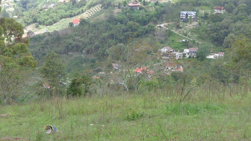 Terreno Aragua>La Colonia Tovar>La Colonia Tovar - Venta:13.535.000.000 Bolivares - codigo: 15-13091