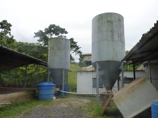 Terreno Carabobo>Belen>Municipio Carlos Arvelo - Venta:16.034.000.000 Precio Referencial - codigo: 15-16460