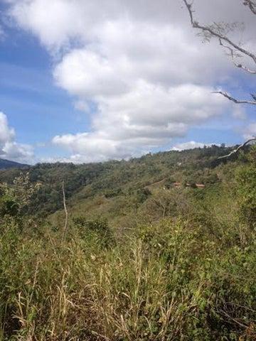 Terreno Distrito Metropolitano>Caracas>Sabaneta - Venta:258.925.000.000 Precio Referencial - codigo: 16-1178