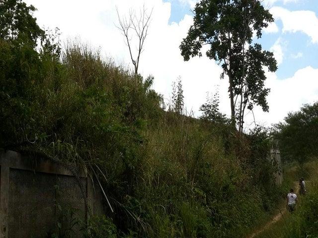 Terreno Distrito Metropolitano>Caracas>Caicaguana - Venta:235.000.000 Bolivares - codigo: 16-1916