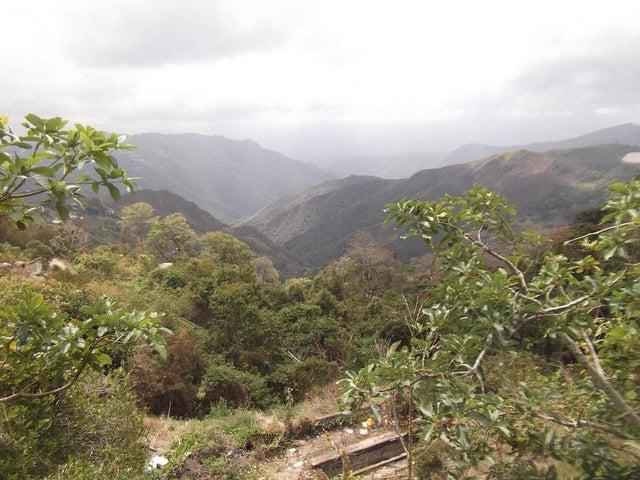 Terreno Miranda>San Pedro de los Altos>Villas Trinidad - Venta:6.284.000.000 Bolivares - codigo: 16-2747