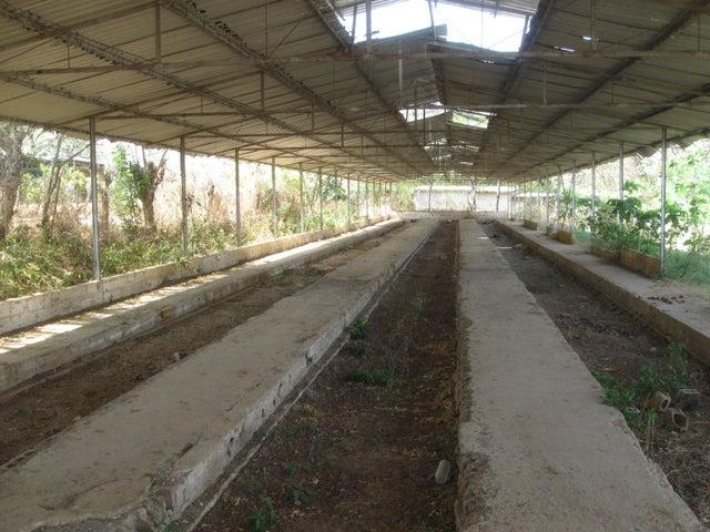 Negocios y Empresas Aragua>Villa de Cura>Camejo - Venta:0 Bolivares - codigo: 16-3058