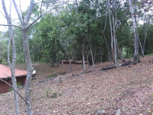 Terreno Distrito Metropolitano>Caracas>Turgua - Venta:13.031.000 Precio Referencial - codigo: 16-3291